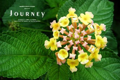 journey156