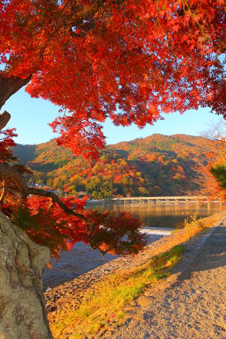 Arashiyama48