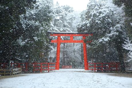 Shimogamo12