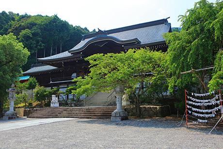 Natsu203