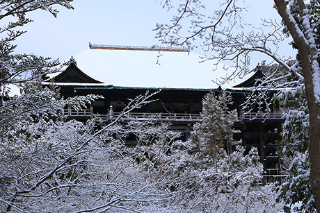 Kiyomizu28