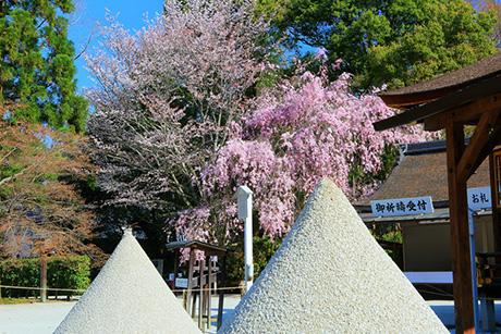 Kamigamo30