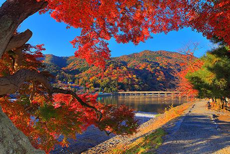 Arashi46