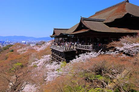 Kiyomizu138