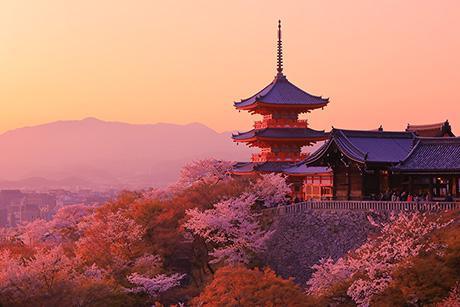 Kiyomizu146